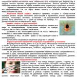 Клещевой-энцефалит-1